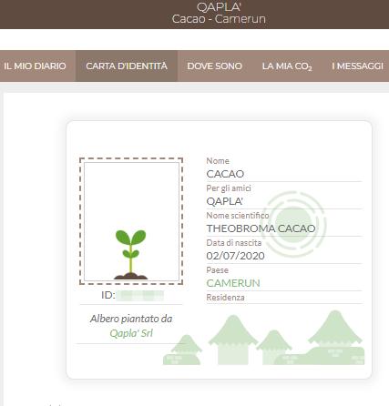 qapla-treedom-cacao